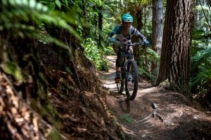 Mountain Biking Skills Rotorua