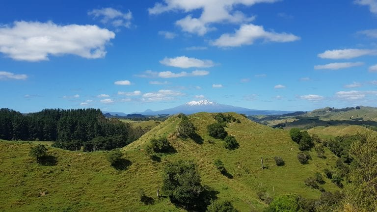 Central North Island Mountain Biking