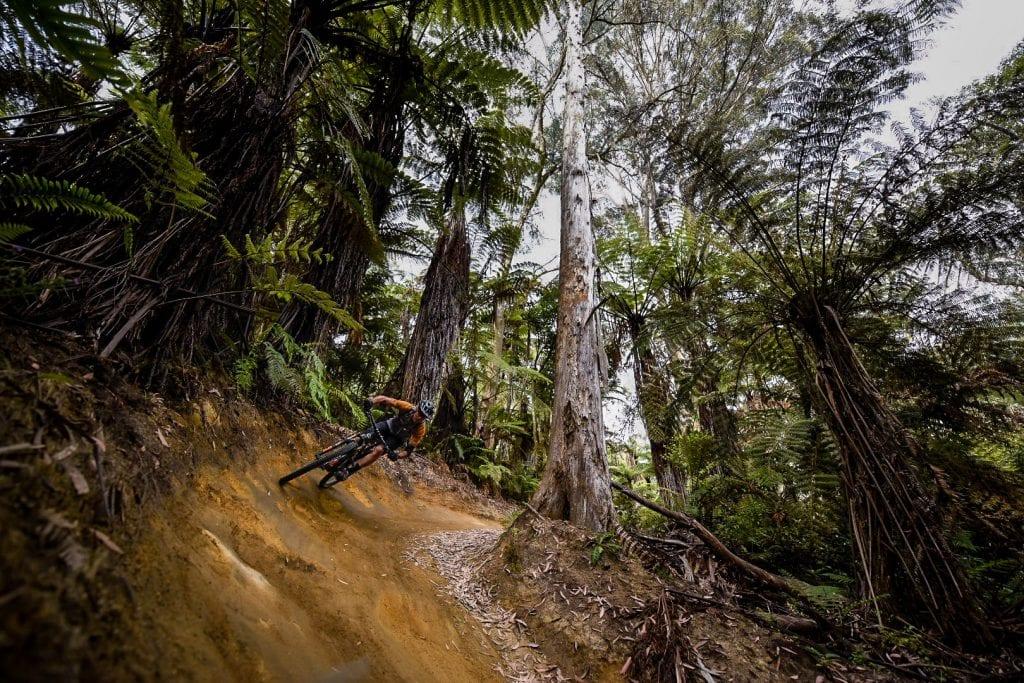 how to corner mtb mountain biking