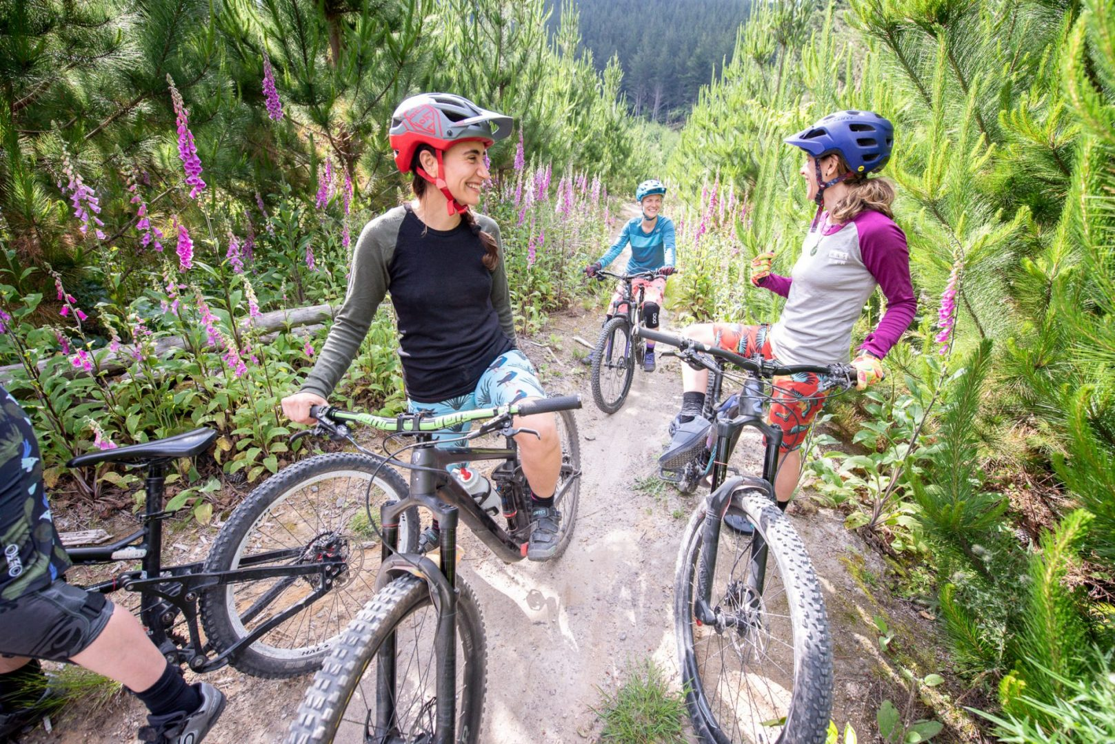 Rotorua mountain bike tour