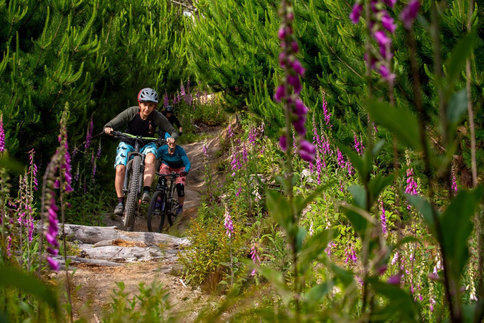 Rotorua mountain bike lessons